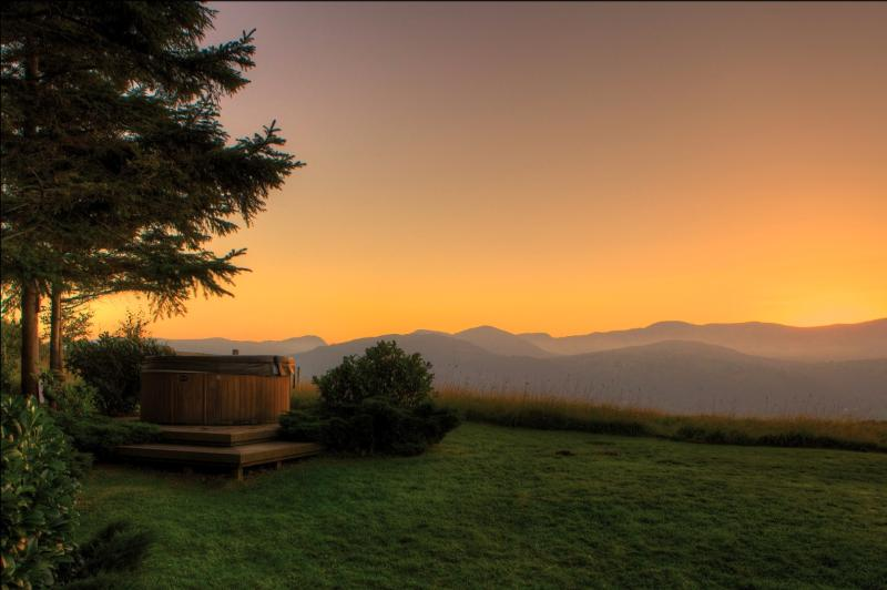 The Cabin, Luxury in the countryside with Hot tub. - Image 1 - Conwy - rentals