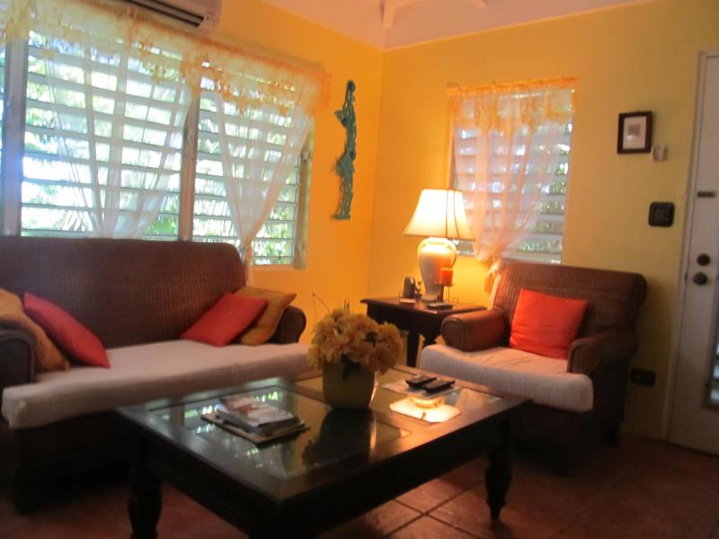 view the sea here - Cariso Suite - Frederiksted - rentals