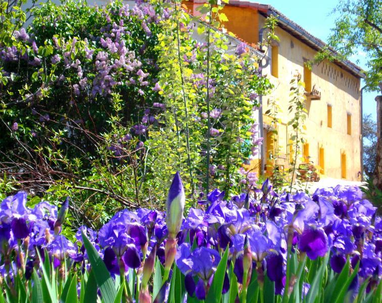 gardens la oropendola Spai Extremadura - FINCA LA OROPENDOLA - SPAIN  EXTREMADURA   upto 6p - Aldeanueva De La Vera - rentals