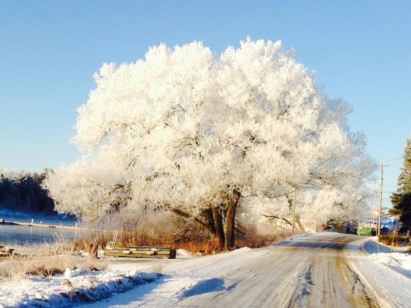 Jack Frost Visits Britt, Riverside Drive Britt, ON P0G 1A0 - Snug As A Bug In A Rug - Point Au Baril - rentals
