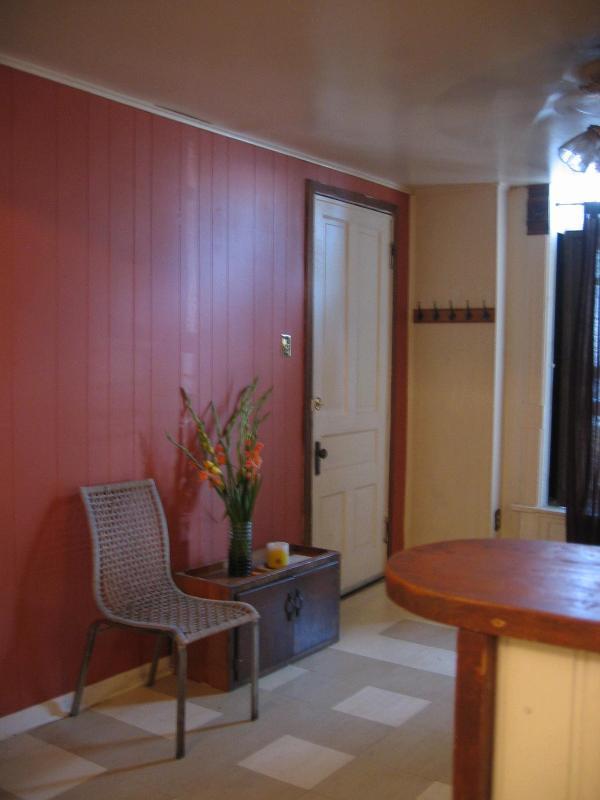 Light Living room - UKrainian Village lovely place - Chicago - rentals