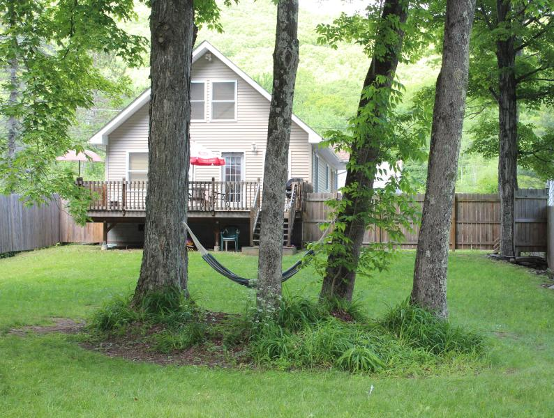 Back of the house in summer - BelleHouse:  Modern and Convenient to Phoenicia - Big Indian - rentals