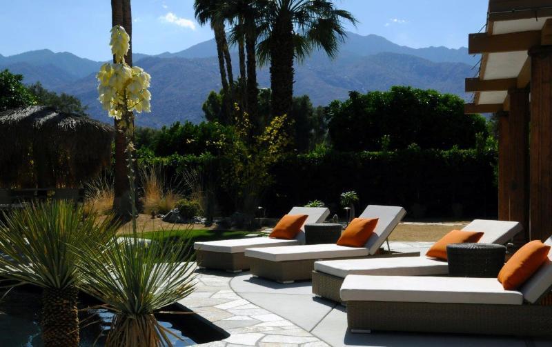 Luxury Rustic Modern; Views, Salt Water Pool & Spa - Image 1 - Palm Springs - rentals