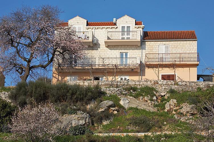 Apartment Bralovic with balcony and pool - A4+1 - Image 1 - Zaton - rentals