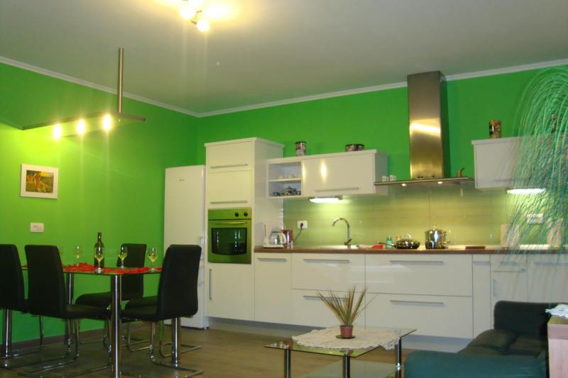 kitchen with all you need for preparing a meal - Accommodation in Vipava valley - an ideal base for - Vipava - rentals