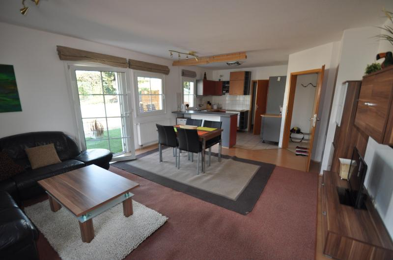 Living room with built in kitchen in the back - Apartment with huge terrace in Vienna - Vienna - rentals