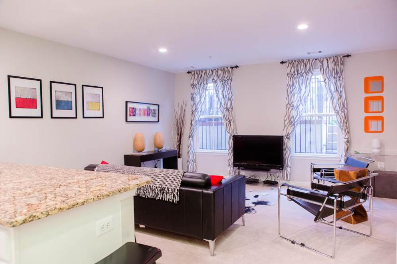 Comfy bright living room - Sweet Suite on Capitol Hill - Washington, DC - Fairlawn - rentals