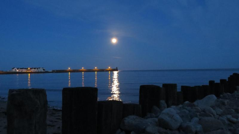 Moonlight - Beautiful Self Catering Accommodation - Dundalk - rentals