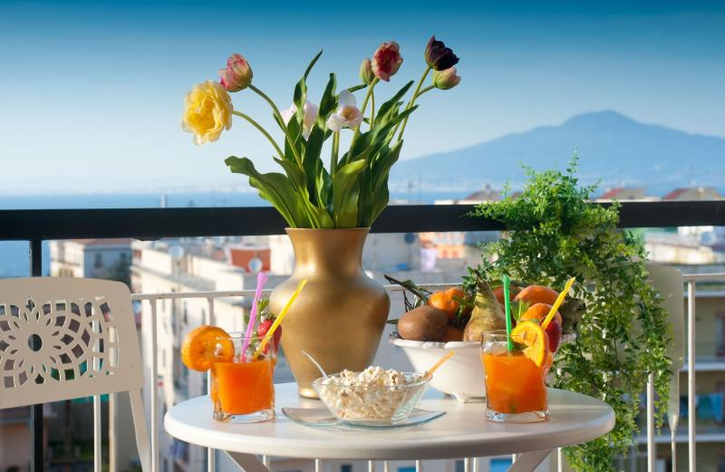 View on Naples Bay and Vesuvious - Lovely and modern 2br/2ba Apartment in Sorrento - Sorrento - rentals