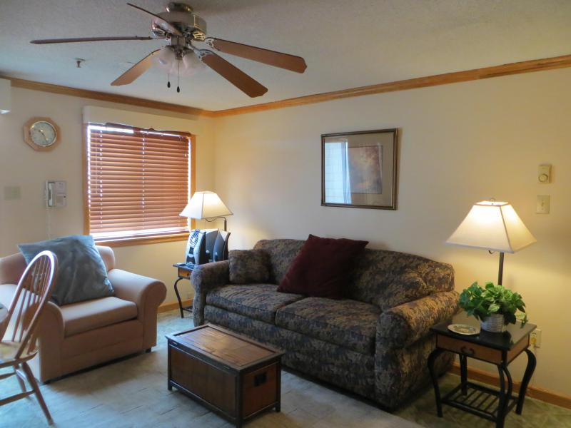 living room - Mtn Lodge, Village Condo, Ski in/out, Convenient - Snowshoe - rentals