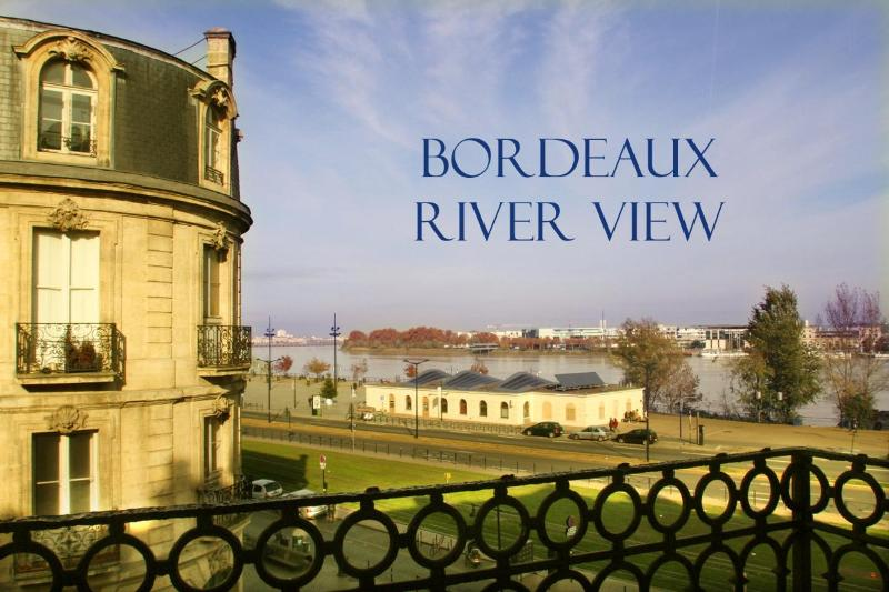 The apartment looks over the Garonne river - Elegant, Charming 1 Bedroom Apt with Amazing Views - Bordeaux - rentals