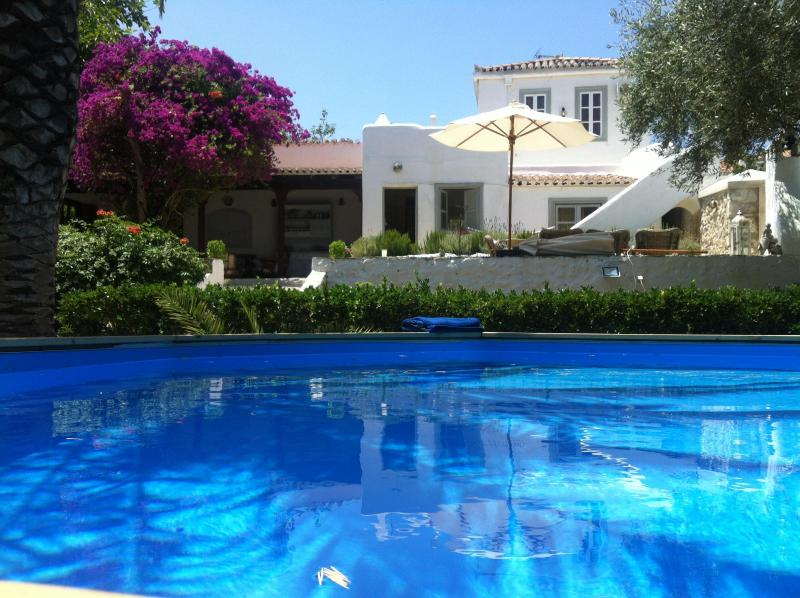 View of the house from the plunge pool - Spetses Villa in a wonderful Greek island garden - Spetses - rentals