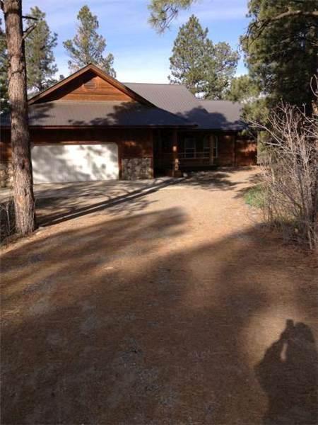 CAPITAN 498 - Image 1 - Pagosa Springs - rentals