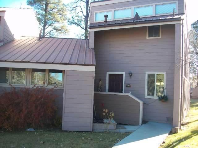 PINES 4013 - Image 1 - Pagosa Springs - rentals