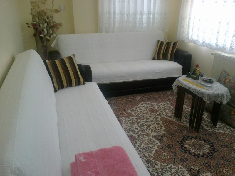 my guestroom for 2,these couches can be turned to beds - Welcome to Istanbul and enjoy it - Istanbul - rentals