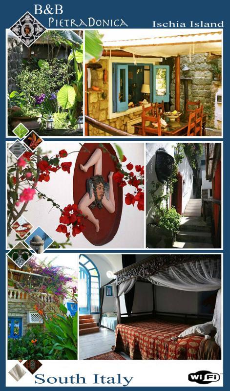 Ischia Bed and Breackfast Ischia - Pietra Donica B&b Historical center - Ischia - rentals
