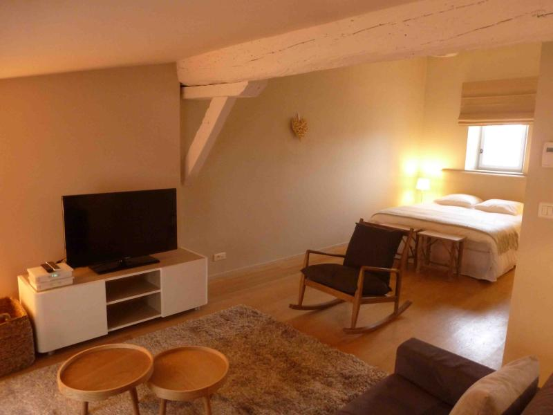 Prestige furnished T2 in front of the JardinPublic - Image 1 - Bordeaux - rentals
