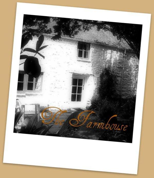 The Farmhouse - Charming Farmhouse character and relaxing - Machynlleth - rentals