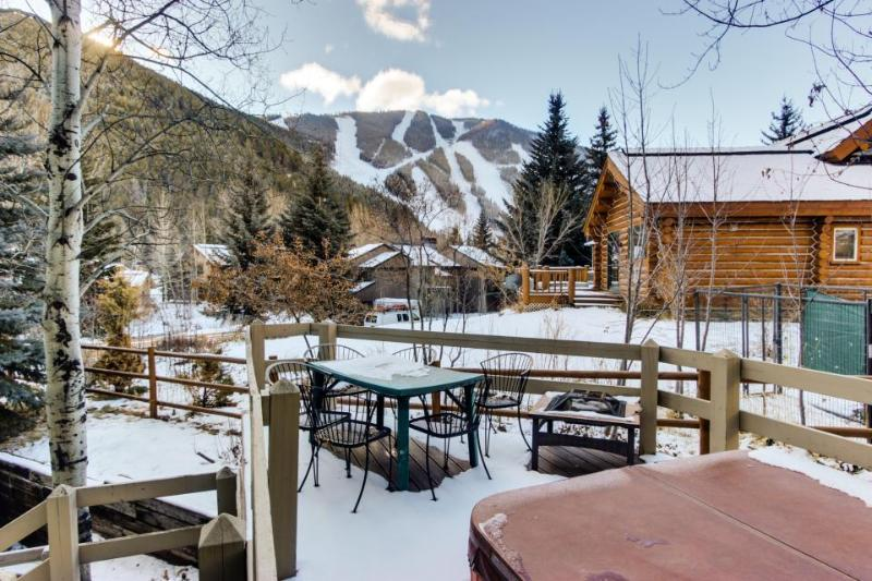 Private hot tub, mountain views, and pet-friendly lodge! - Image 1 - Ketchum - rentals