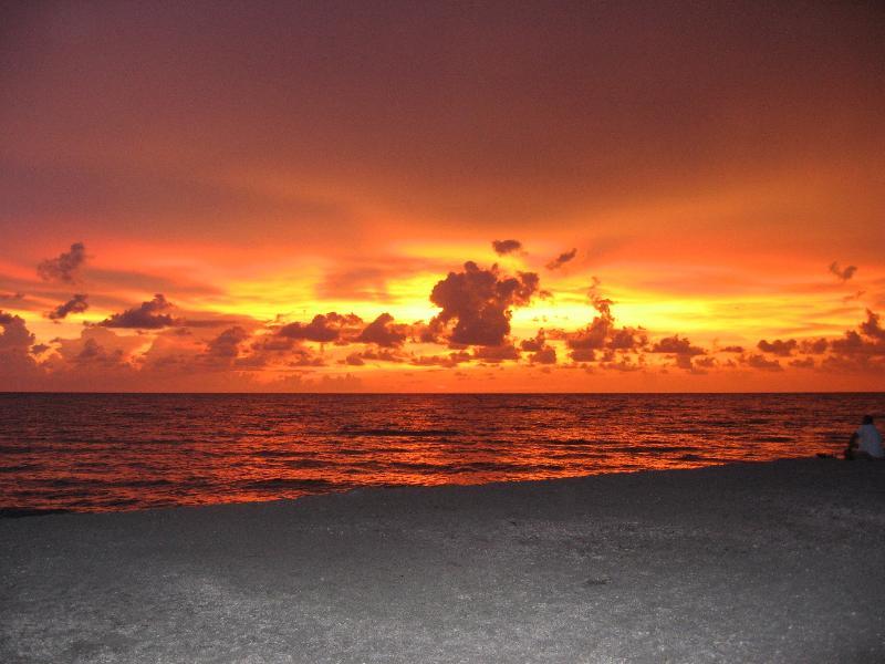 Sunset at Blind Pass Beach - Sanibel Island's Best Kept Secret! - Sanibel Island - rentals