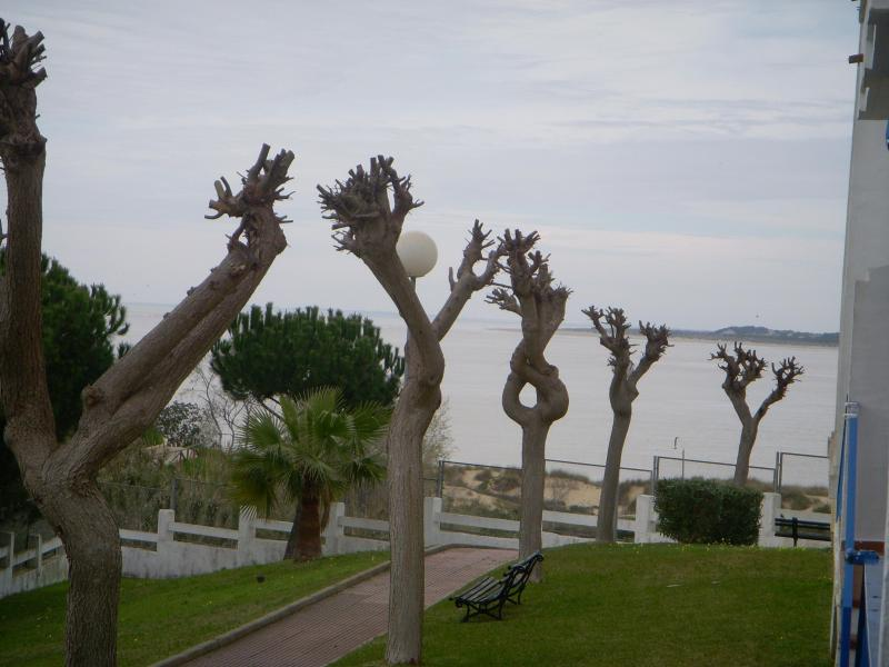 View - Sanlucar de Barrameda(Cadiz)50m to beach,2-4people - Sanlucar de Barrameda - rentals