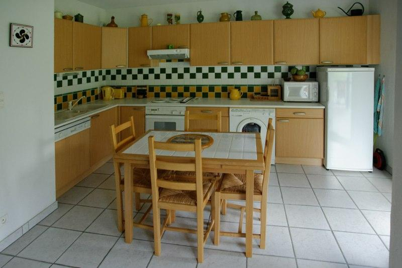 Pyrénees : Beautiful 2 bedrooms duplex center of c - Image 1 - Loudenvielle - rentals