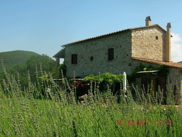 Farmhouse view - Lovely Tuscany Farmhouse sea view near Pisa - Castellina Marittima - rentals
