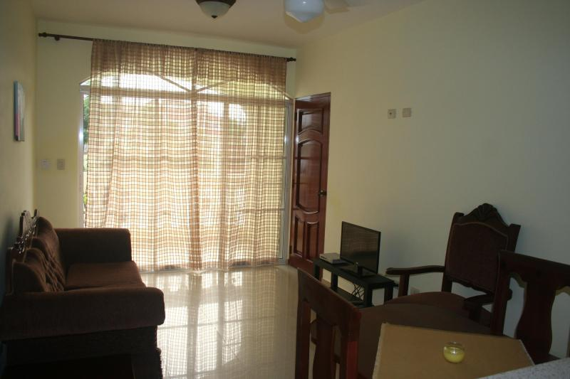 Living room - Beach apartment with a big pool #02 - Puerto Plata - rentals