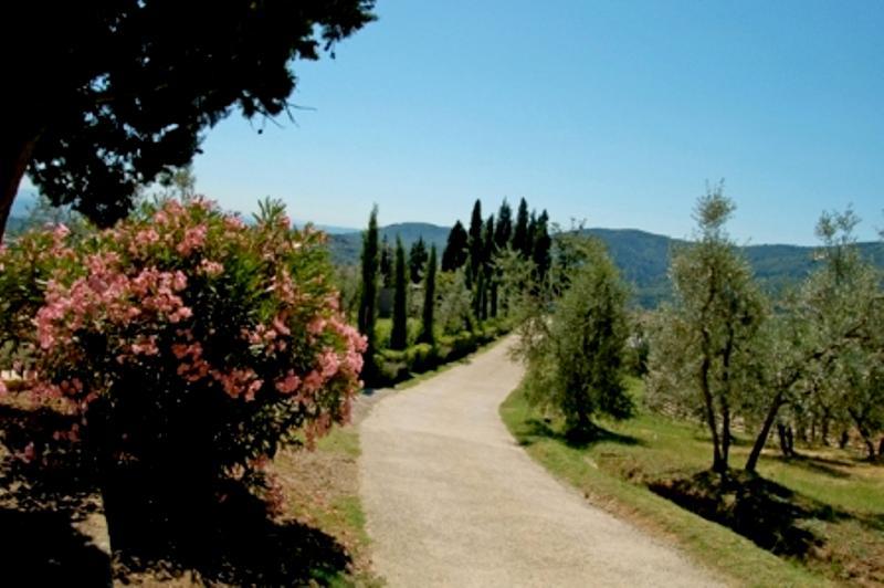 arriving at La Forra - Vacation apartment & pool in Tuscany, Chianti - Montegonzi - rentals
