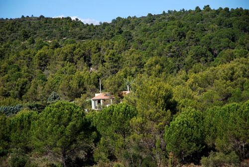 general view of property - Studio gite with garden and views in Cesseras! - Eyne - rentals