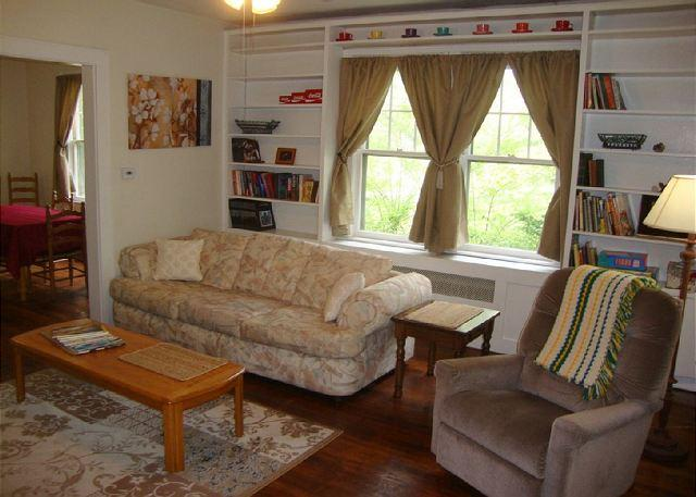 Living Room 1 - Pet Friendly, Fenced Yard, Sunny and Bright! Wi-Fi and Screened Porch. - Asheville - rentals