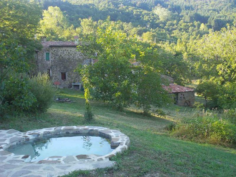 Tuscan Vacation Rental at Lucashouse Petra - Image 1 - Seggiano - rentals