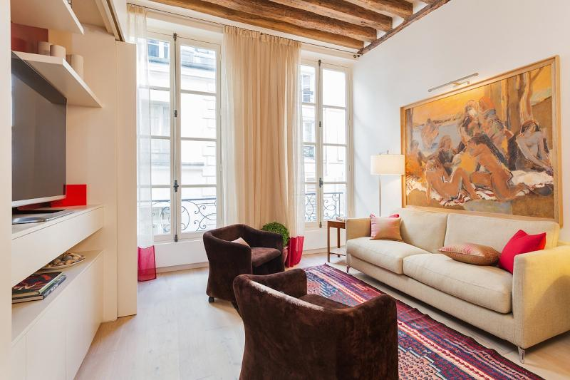 Comfortable Living Room - 39. THE BEST OF SAINT GERMAIN-PRESTIGIOUS & MODERN - Paris - rentals