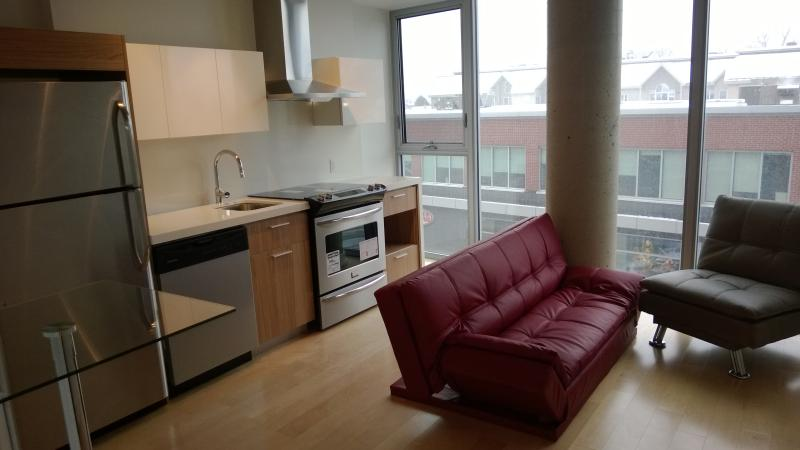 All new Appliances - Luxury Condo - Central Ottawa close to all areas! - Ottawa - rentals