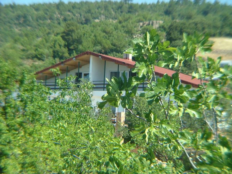 overall view of two attached house - North Aegean Hidden Retreat - Altinoluk - rentals