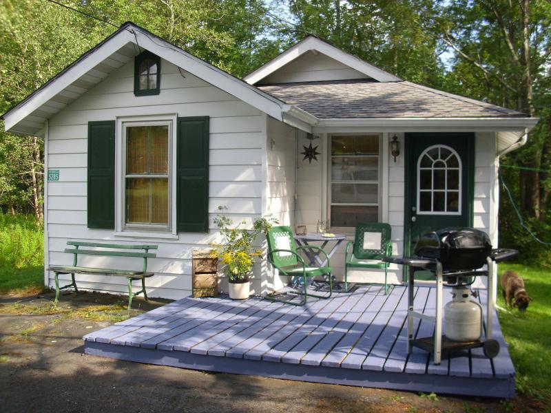 Cozy Cottage - Image 1 - Hunter - rentals