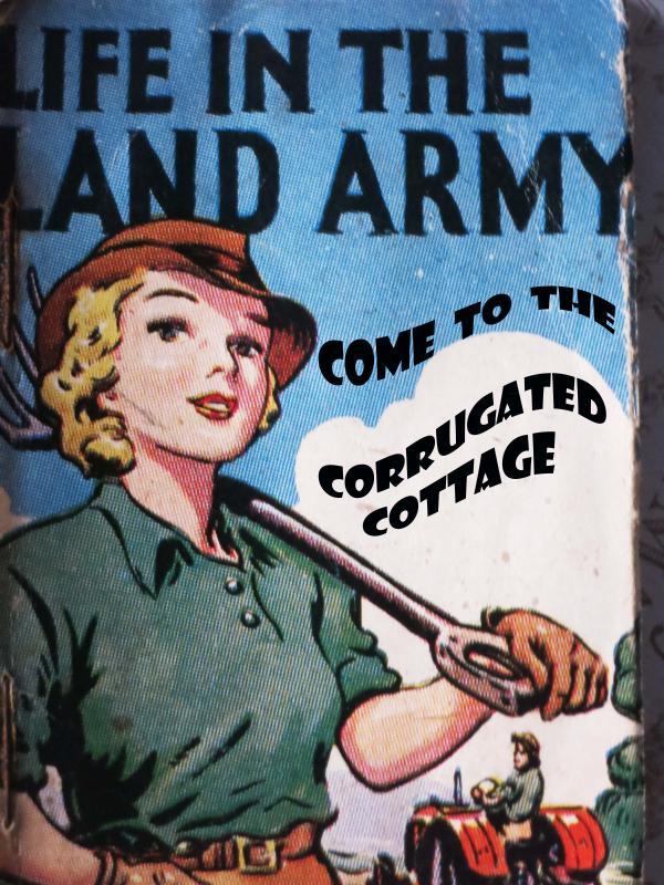 Corrugated cottage - Image 1 - Baltonsborough - rentals