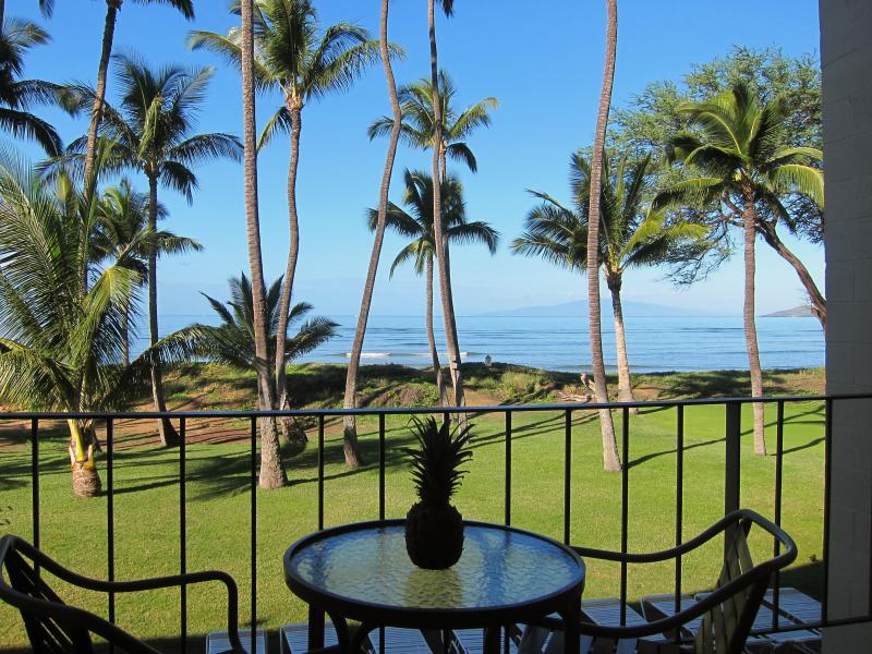 Across the lawn and onto the beach! - Beachfront paradise, ocean views, great location - Kihei - rentals