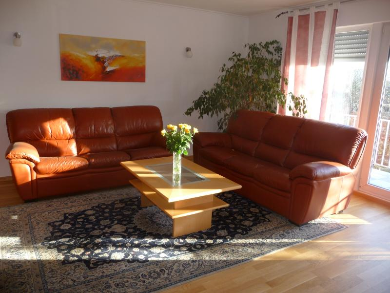 Luxurious Apartment - Image 1 - Bonn - rentals