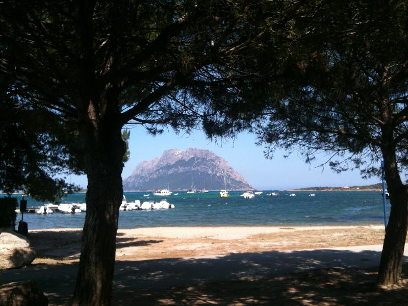 The beach - Sardinia dream - Sardinia - rentals