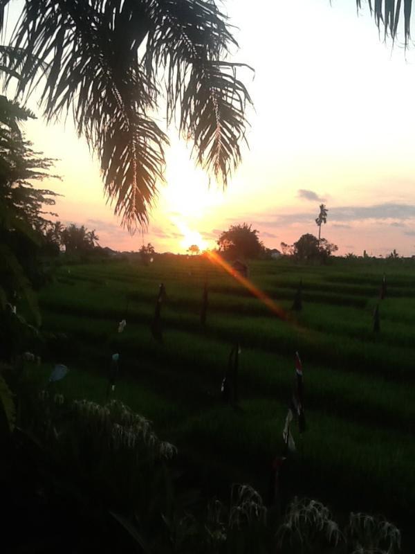 Villa Kubu Dewi Sri - Image 1 - Ketewel - rentals