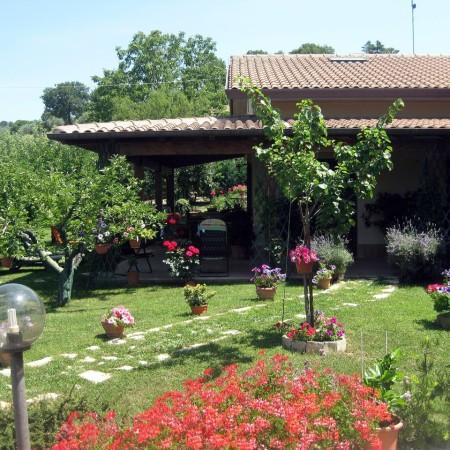 ASSISI VERY NICE PRIVATE APT IN B&B - Image 1 - Petrignano d'Assisi - rentals