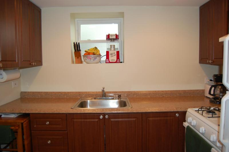 Full kitchen with all needed supplies - New construction 3 bedroom apartment near 90/94 - Chicago - rentals
