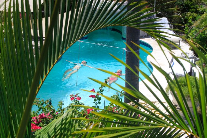 pool - Leisure in Paradise - Providenciales - rentals
