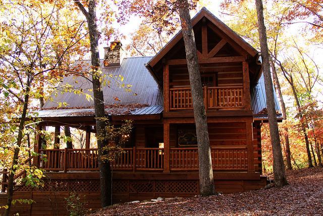 Cinnamon Valley - 'The Elk Lodge' - Image 1 - Eureka Springs - rentals