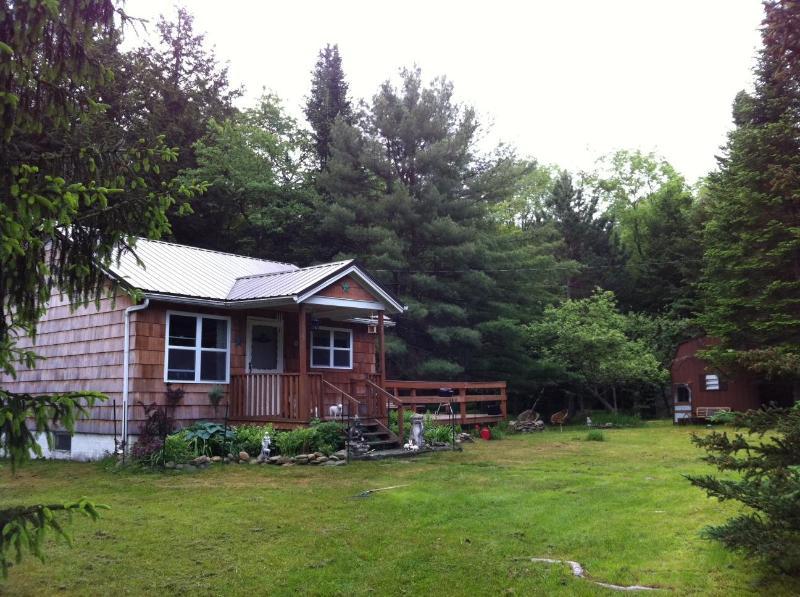 Catskills Mid-Century Modern Cottage - FABulous! - Image 1 - Livingston Manor - rentals