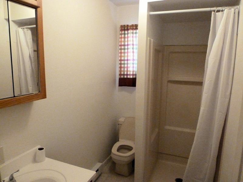 Main Level Bath - 432 Pine Knoll~ Lake Harmony 5 Bedroom~Sleeps 12 - Lake Harmony - rentals