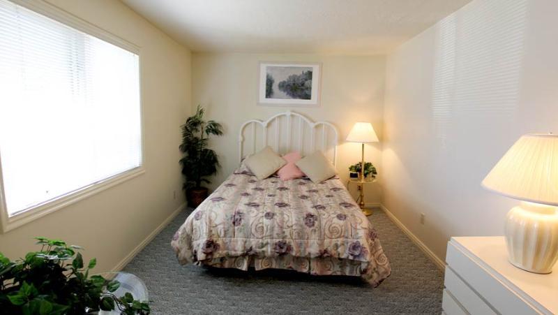 204 - 2 Bed 2 Bath Deluxe - Image 1 - Saint George - rentals