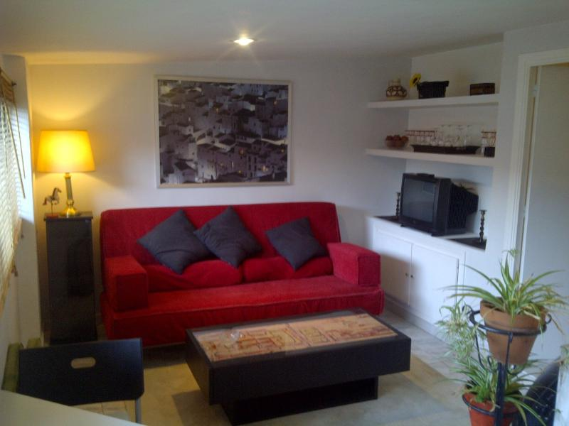 Living room - Independent guesthouse with use of pool (summer) - Madrid - rentals