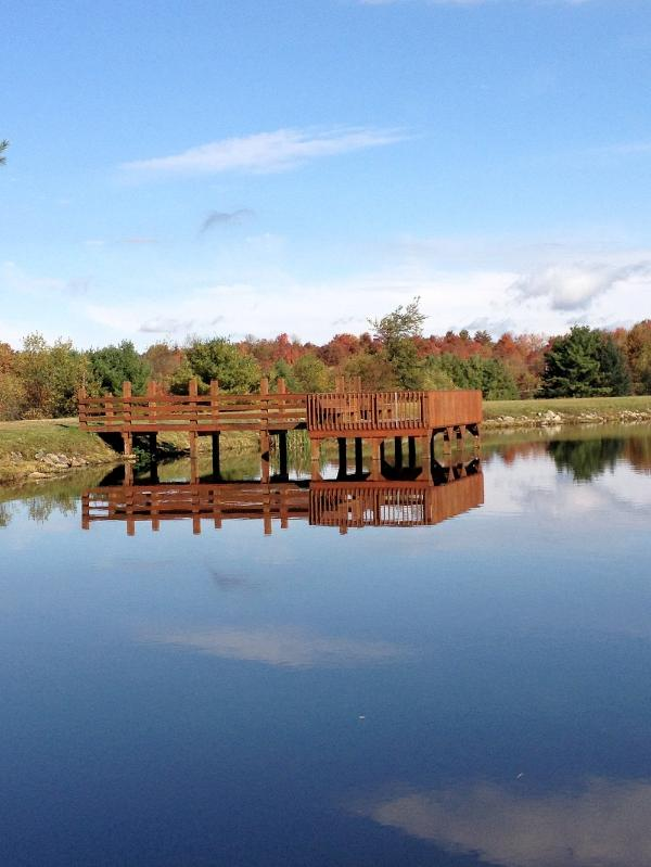 Fishing Pier at fully Stocked Lake Sinca - Better than Home~6 Bedroom~3 Bath Sleeps up to 28 - Blakeslee - rentals